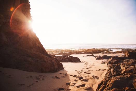 Beach Ocean Shore #16336