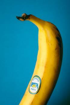 Banana Edible fruit Fruit #16366