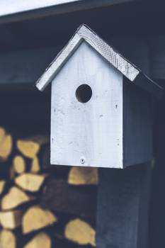 Protective covering Shelter Birdhouse #16421