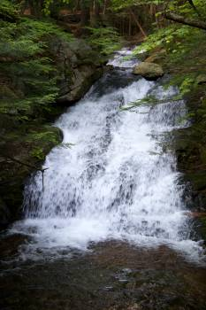 Waterfall Spring River #16448