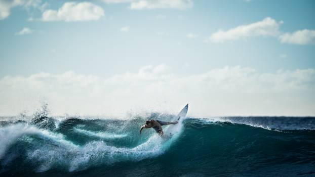 surfing surfer wave  Free Photo