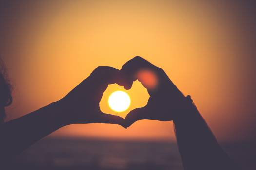 heart hands silhouette  Free Photo