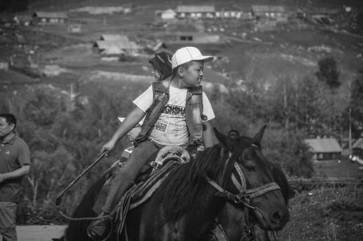 Cowboy Horse Hat Free Photo