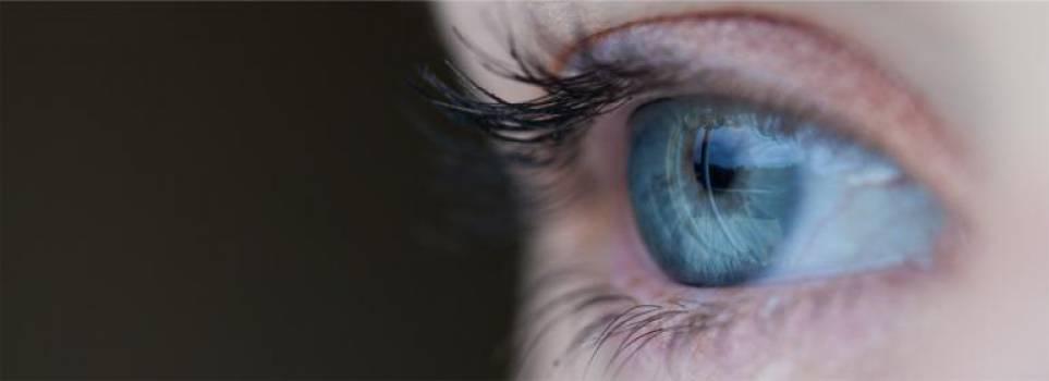 eyes  #16597