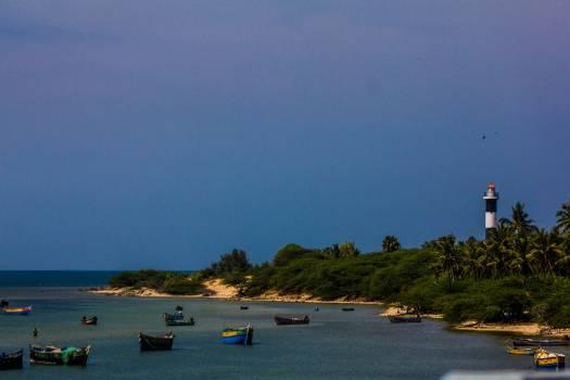 Beach Shore Sea #166709