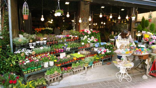 Marketplace Mercantile establishment Place of business #167870