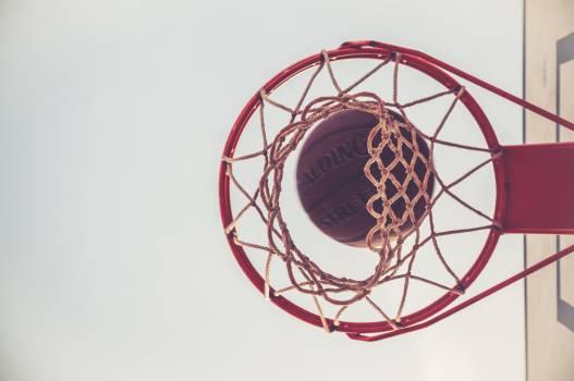 basketball net hoop  #16795