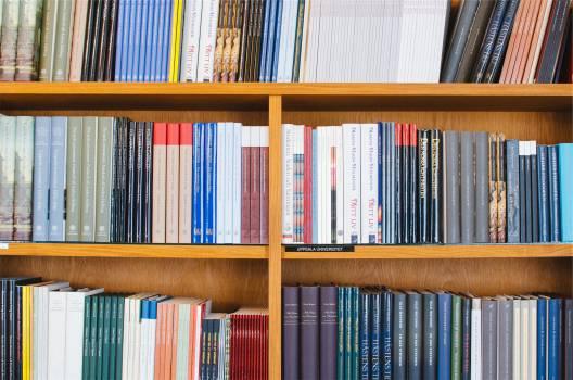 library books shelves  #16820