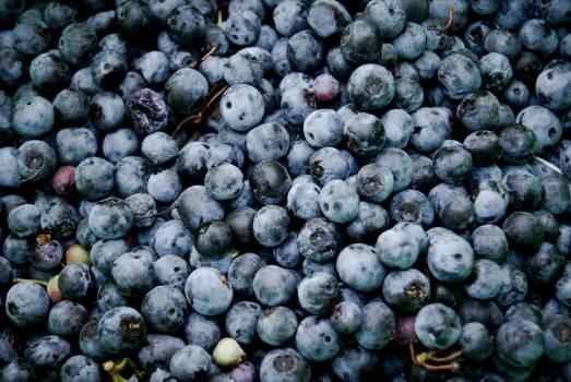 Grape Fruit Berry Free Photo