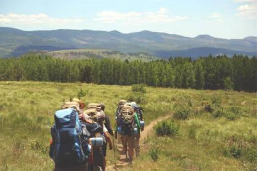 hiking hikers backpacks  #17126