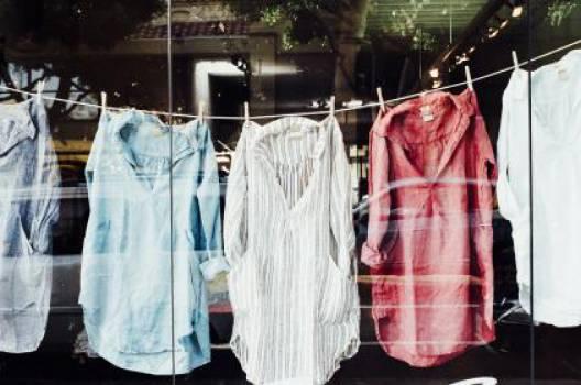 clothes shirts hanging  Free Photo