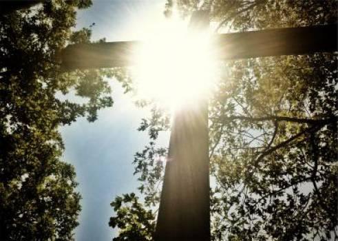 sunshine cross religion  Free Photo