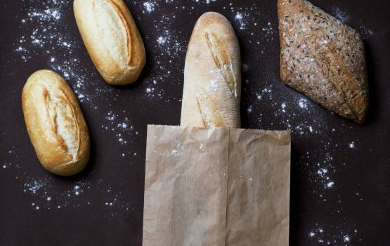 bread baguette bakery  #17319