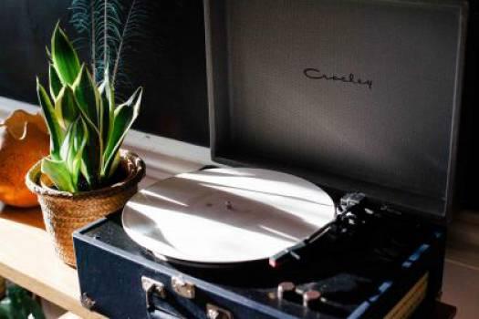 turntable record vinyl  #17393