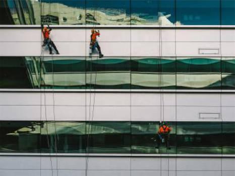 windows washing workers  Free Photo