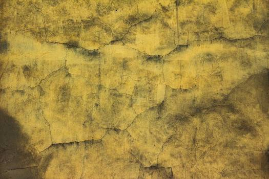 Grunge Decay Texture Free Photo