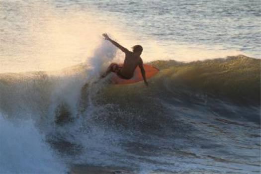 surfer surfing waves  #17531