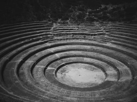 Curve Fractal Digital Free Photo