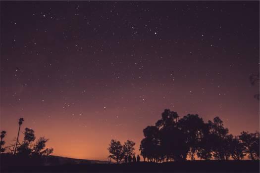 stars sky dusk  Free Photo