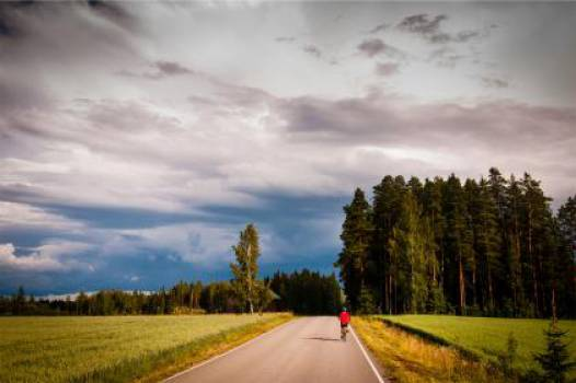 cyclist cycling bicycle  Free Photo