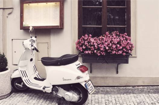 vespa scooter moped  #17732
