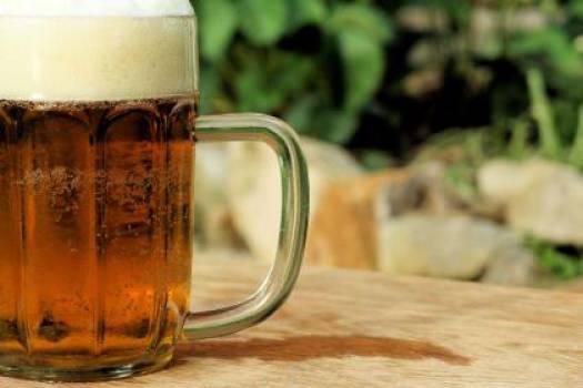 beer pint brew  #17745