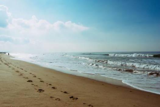 beach sand footprints  Free Photo