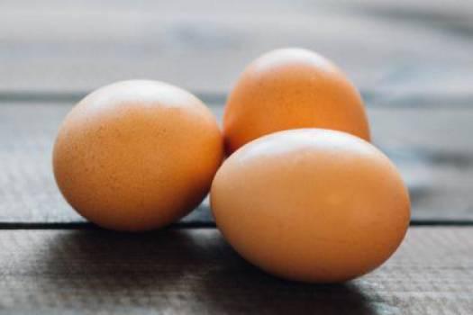 eggs food breakfast  Free Photo