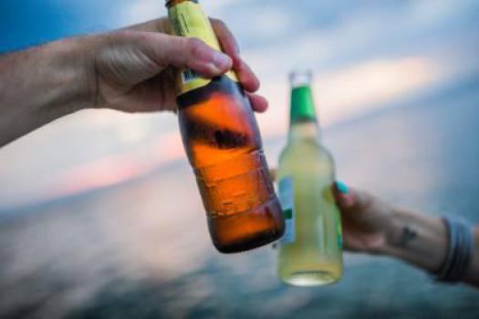 beer alcohol bottles  #17919