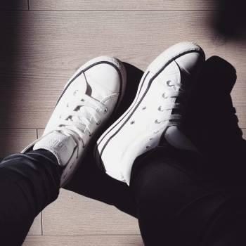 Shoe Footwear Shoes Free Photo