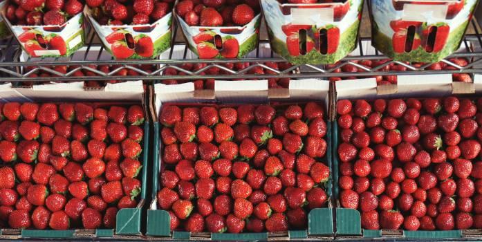 strawberry strawberries fruits  Free Photo