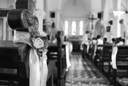 Groom Wedding Bride Free Photo