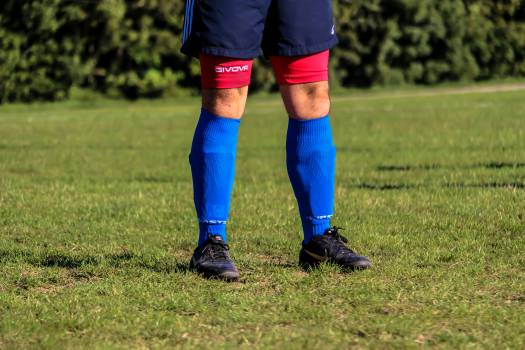 Soccer Ball Grass Free Photo