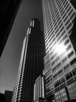Skyscraper Architecture Building #181802