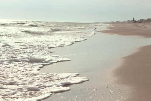 beach sand shore  Free Photo