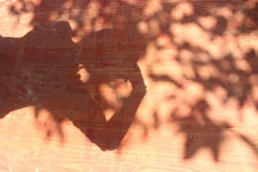 Bat Grunge Wall Free Photo