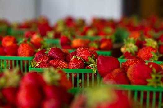 strawberries strawberry fruits  #18433