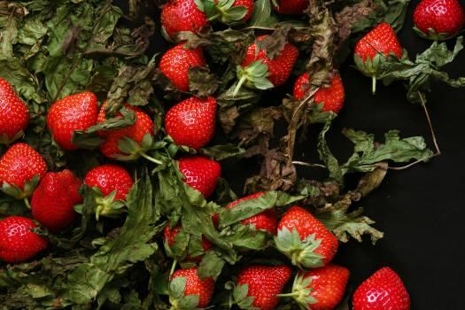 strawberries strawberry fruits  #18463