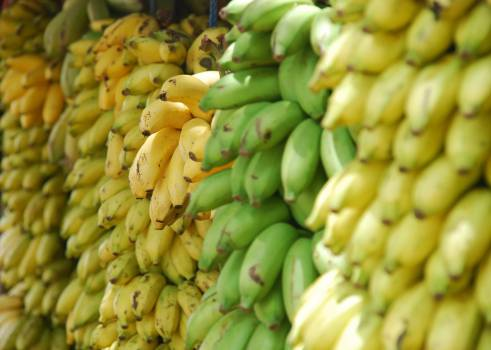 bananas fruits food  Free Photo
