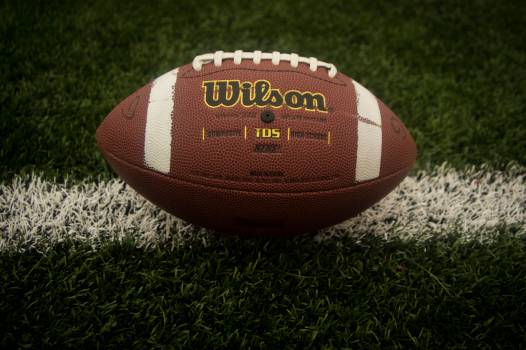 football field wilson  #18521