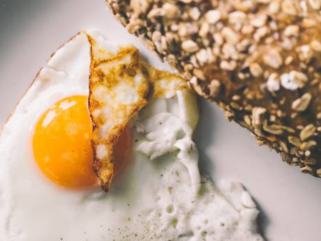 fried egg breakfast  Free Photo