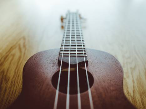 ukulele music instrument  #18581