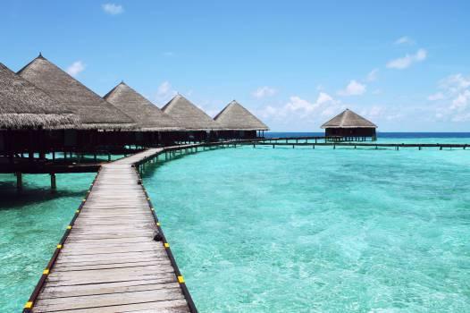 tiki huts tropical paradise  Free Photo