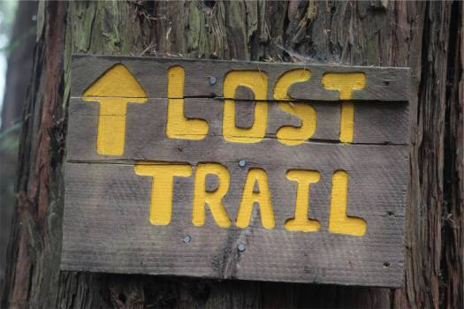 lost trail sign  Free Photo