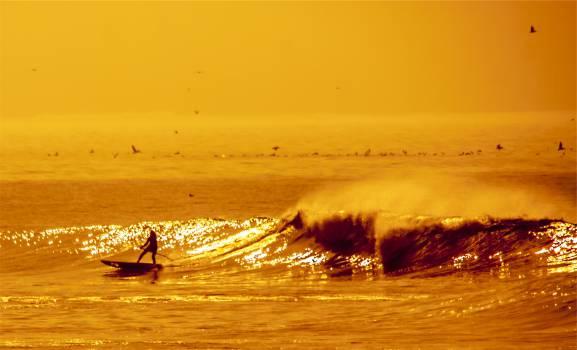 surfer surging waves  #18866