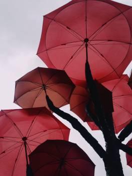 Umbrella Canopy Shelter #188956