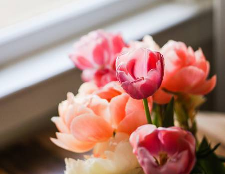 flowers bouquet  #18920