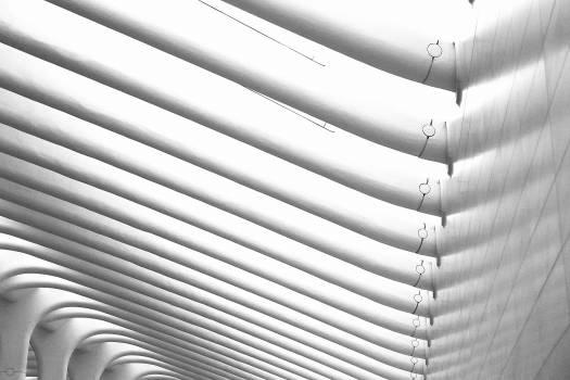 building curves texture  #18928
