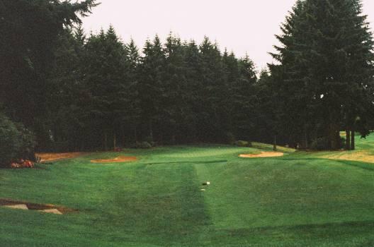 golf course fairway green  #18934