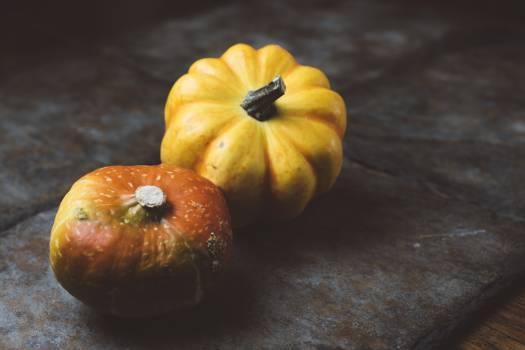 Pumpkin Squash Vegetable #189858